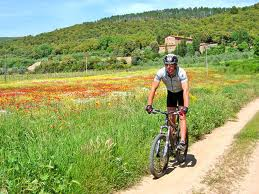 mountain bike sulle strade bianche in Toscana