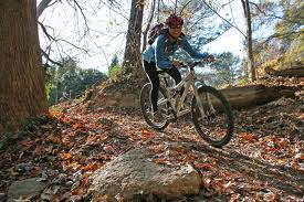mountain bike nei boschi in Toscana